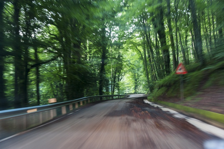 Foresta Umbra Blurry road sign