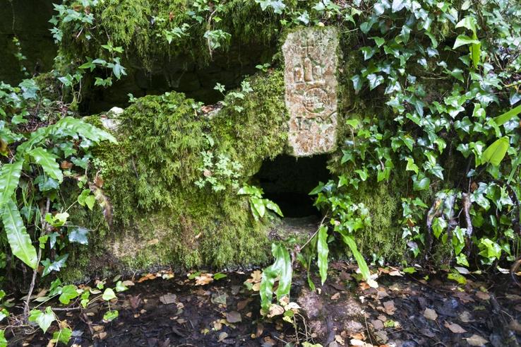 Foresta Umbra fountain rock