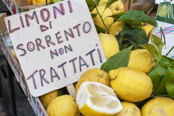 Italy Sorrento Unwaxed Lemons