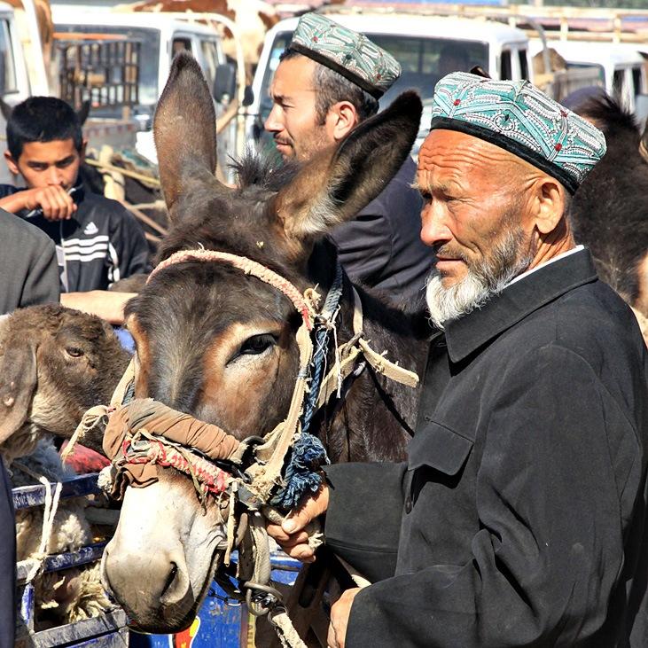 Karakoram Highway Kashgar Livestock Market