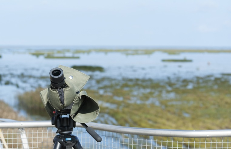 Birdwatching in Liminka Bay Scope