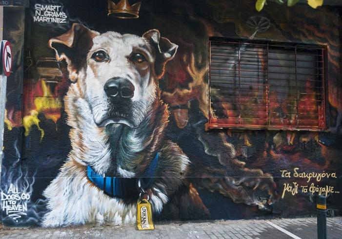 Athens Loukanikos, the protest dog