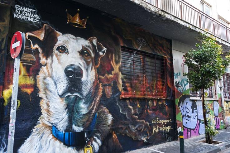 athens unusual Loukanikos the Protest Dog