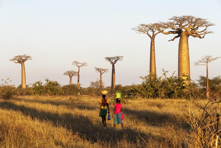 Madagascar Avenue of baobabs girls