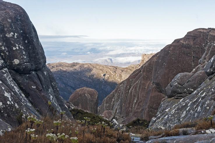 Climbing Pic Boby View