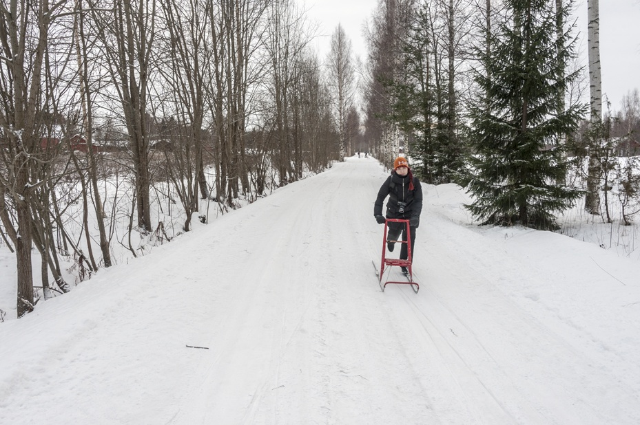 things to do in Mikkeli in Winter kick sled