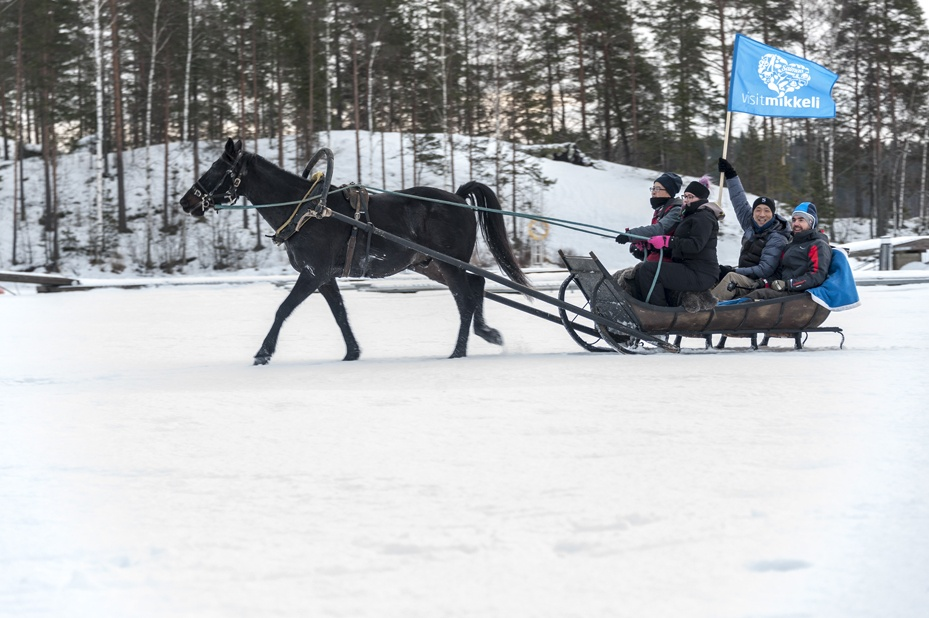 things to do in Mikkeli in Winter horse sledge