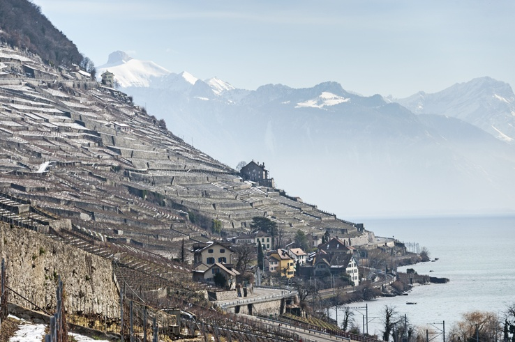 Lavaux terraces vineyards unesco