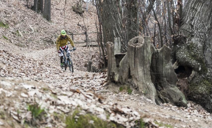 downhill mountain biking biella