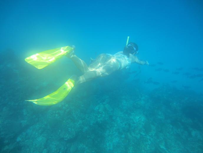 travel to cuba snorkeling cayo jutias