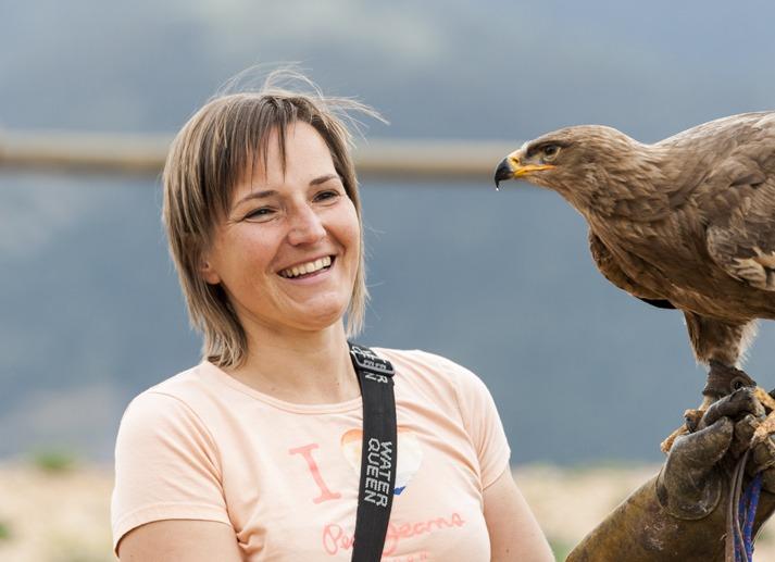 golden eagle stania zoo del pirineu