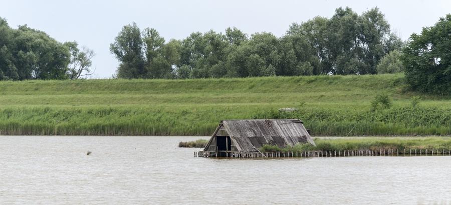 lagoon hut reeds