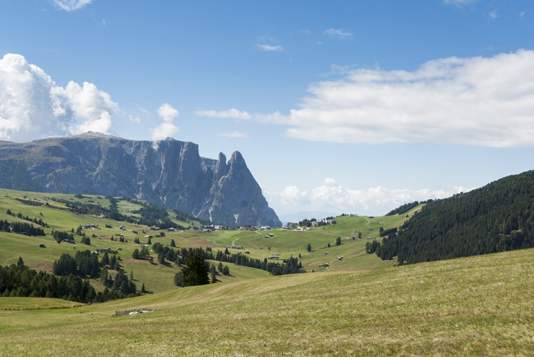 sciliar south tyrol summer