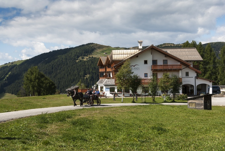 south tyrol mountain house horse carriage