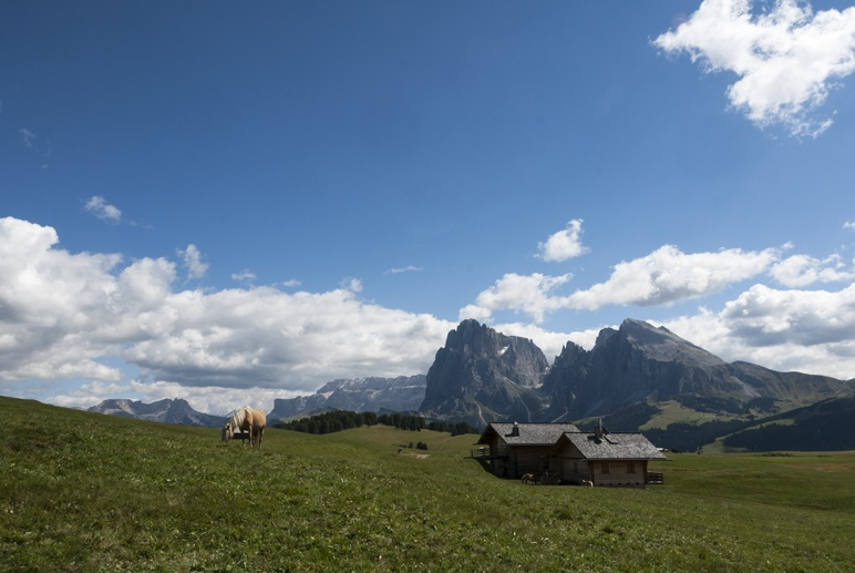 sassolungo mountain houses alto adige