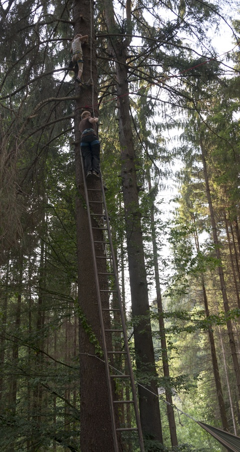 tree climbing czech adventures