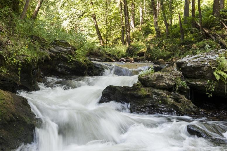 cesky raj kamenice river
