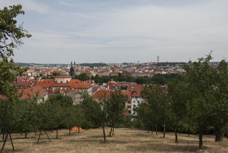 Petrin hill orchard prague
