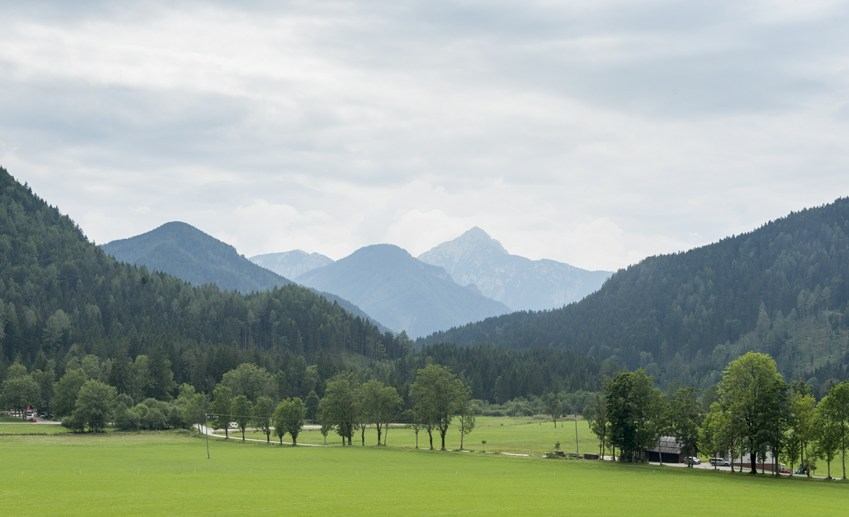 jezersko mountains green meadow