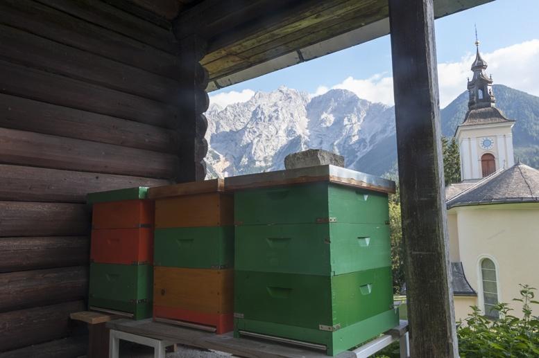 slovenia beekeper hut