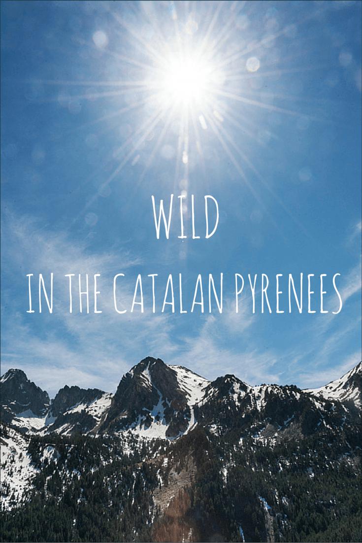 wild catalan pyrenees pin