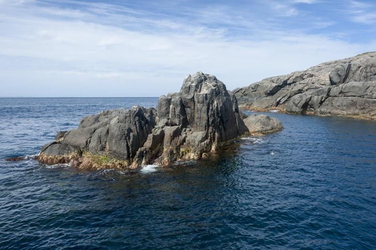 neptune island south australia