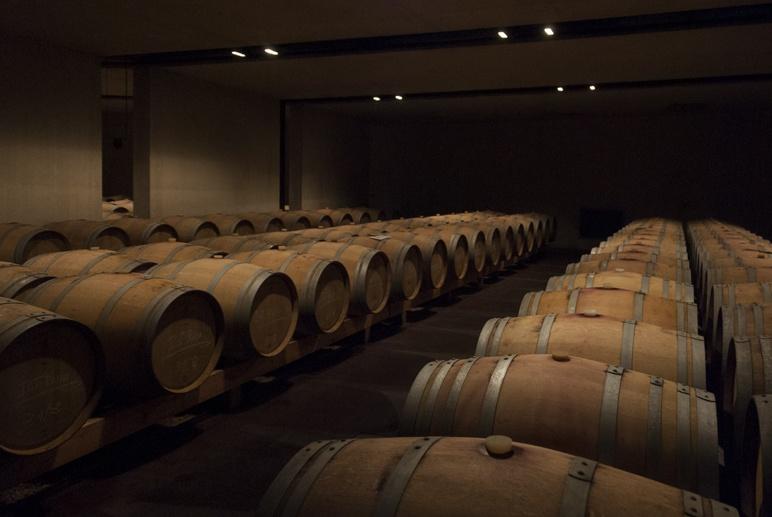 manincor winery caldaro barrels