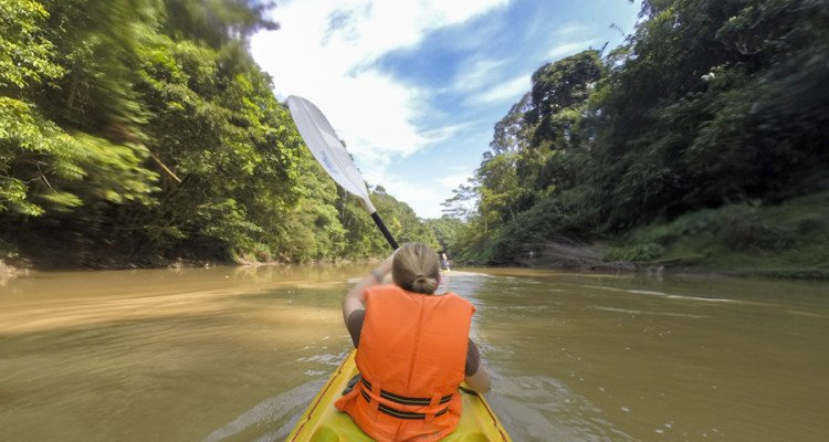 adventures in Borneo Kayaking in sarawak