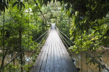 Gunung mulu national park hanging bridge