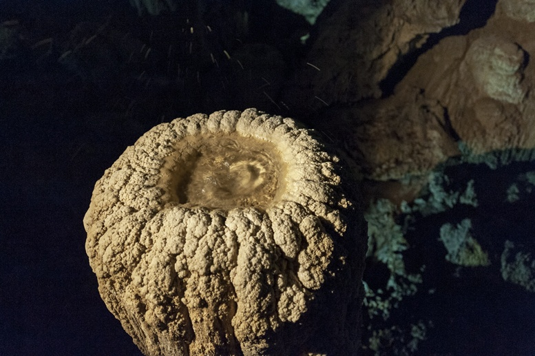 clearwater cave mulu stalactite