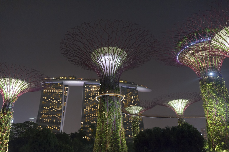 gardens by the bay night
