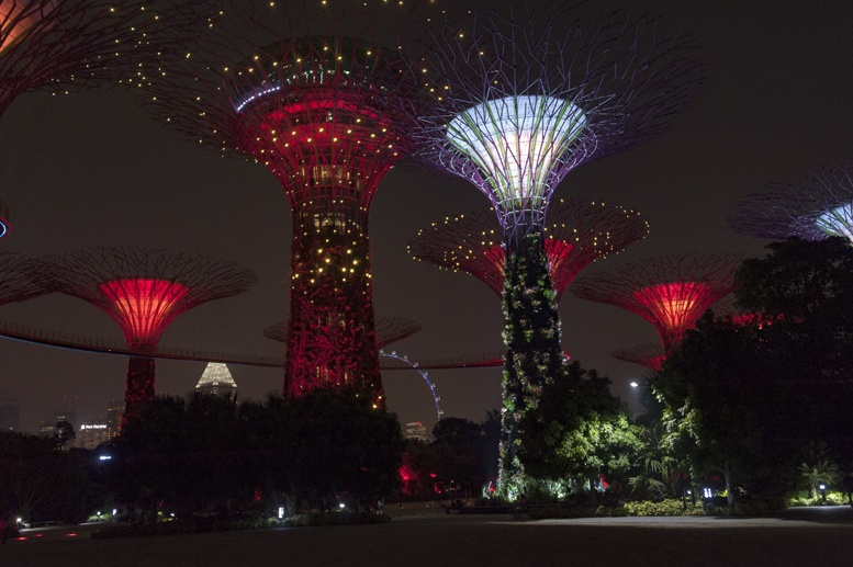 gardens by the bay supertrees night