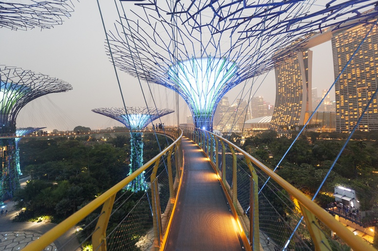 supertrees skywalk night