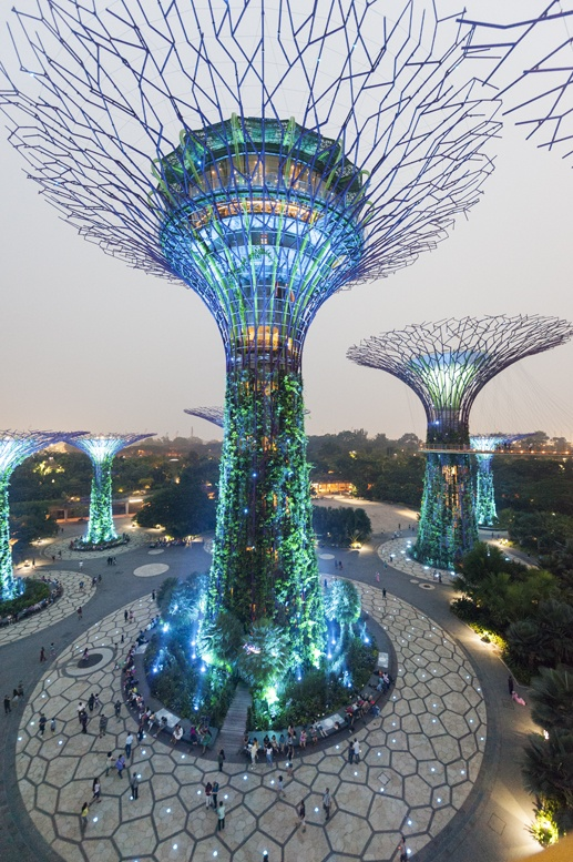 gardens by the bay nature in singapore