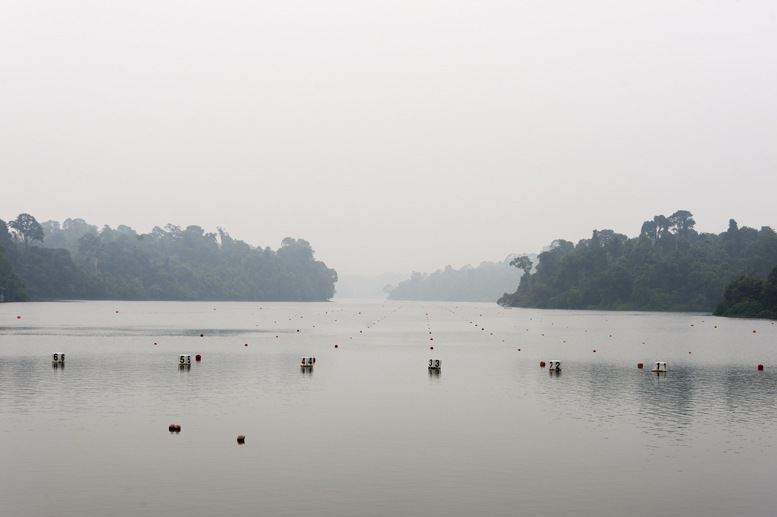 macritchie reservoir singapore