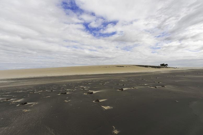 jericoacoara-black-beach