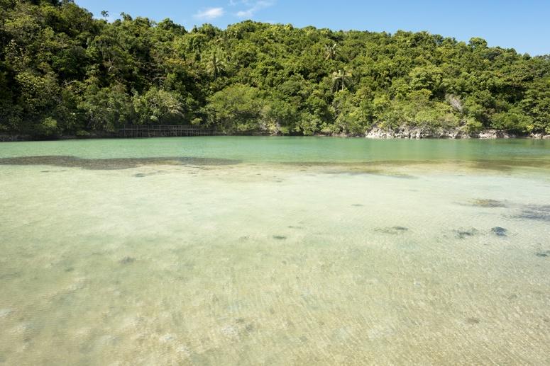 moray eel lagoon danjugan