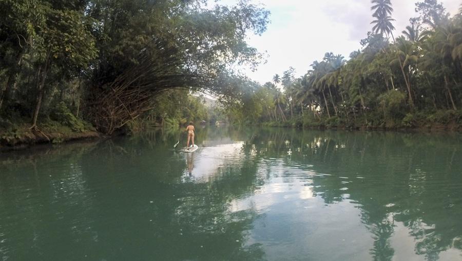 paddleboarding bohol loboc river palms