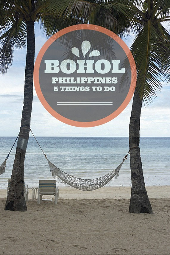 things to do in bohol pin