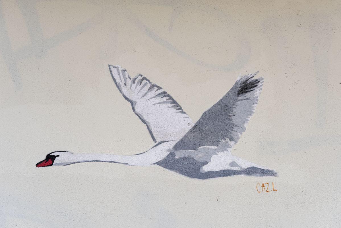 berlin swan street art