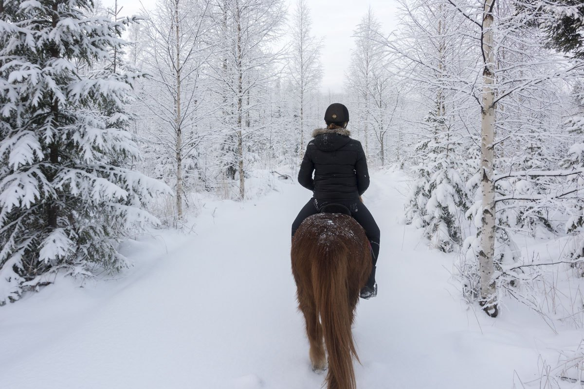 horseriding finland snow forest