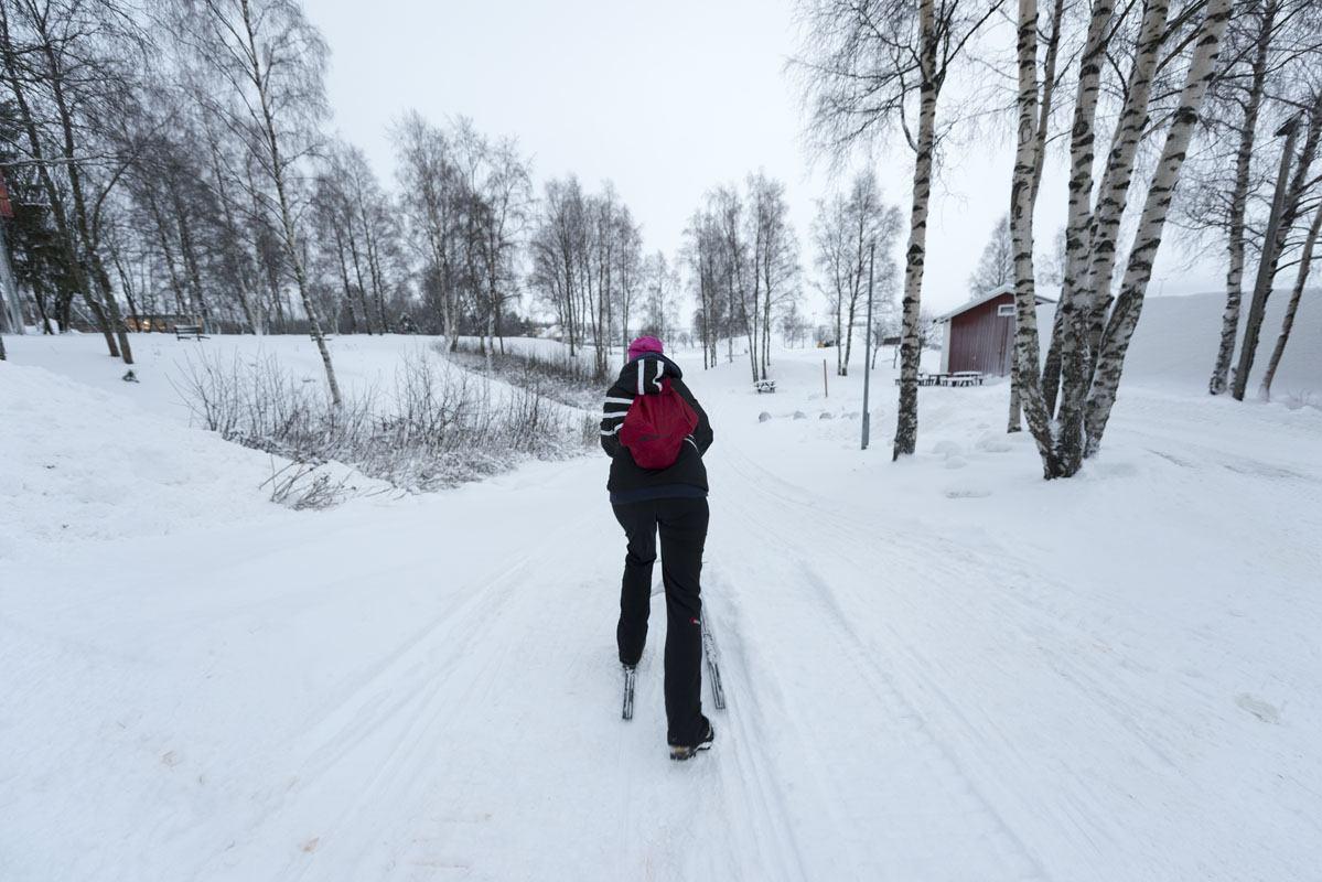 kemi kick sled finland