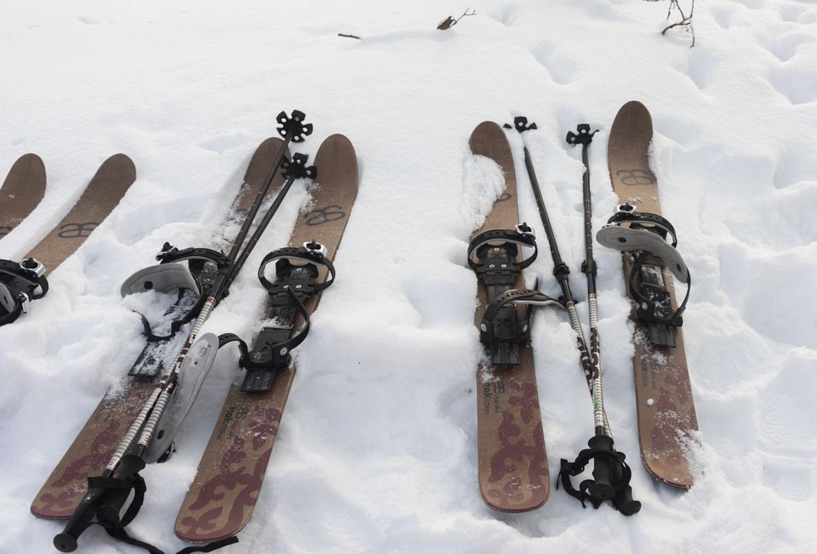 haltia altai skis