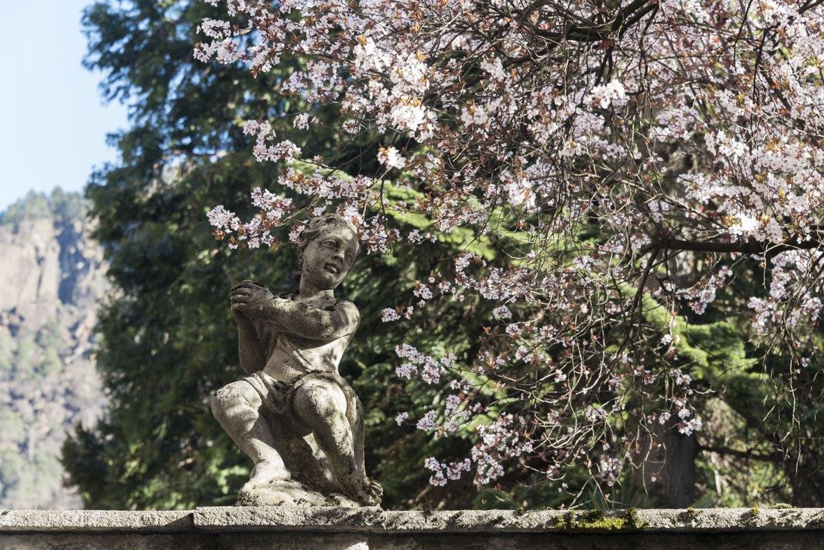 chiavenna statue flowers