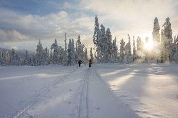 salla finland cross country ski