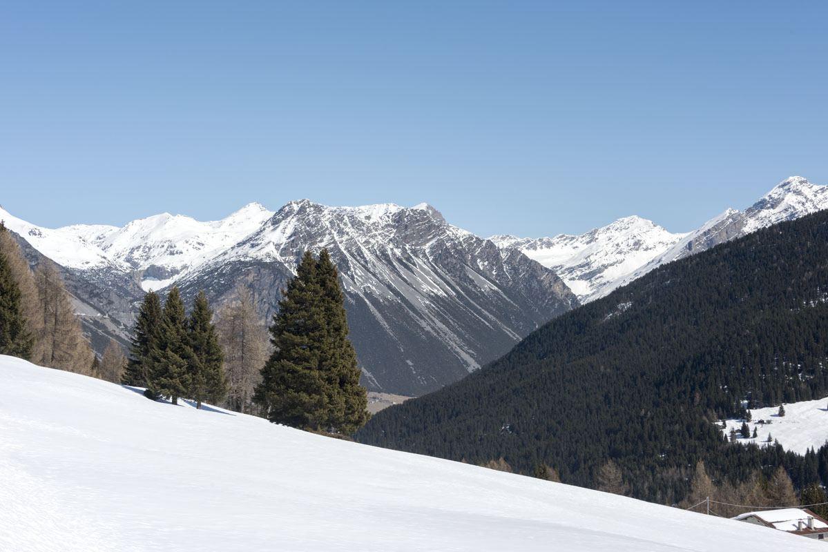 Valtellina scenery spring