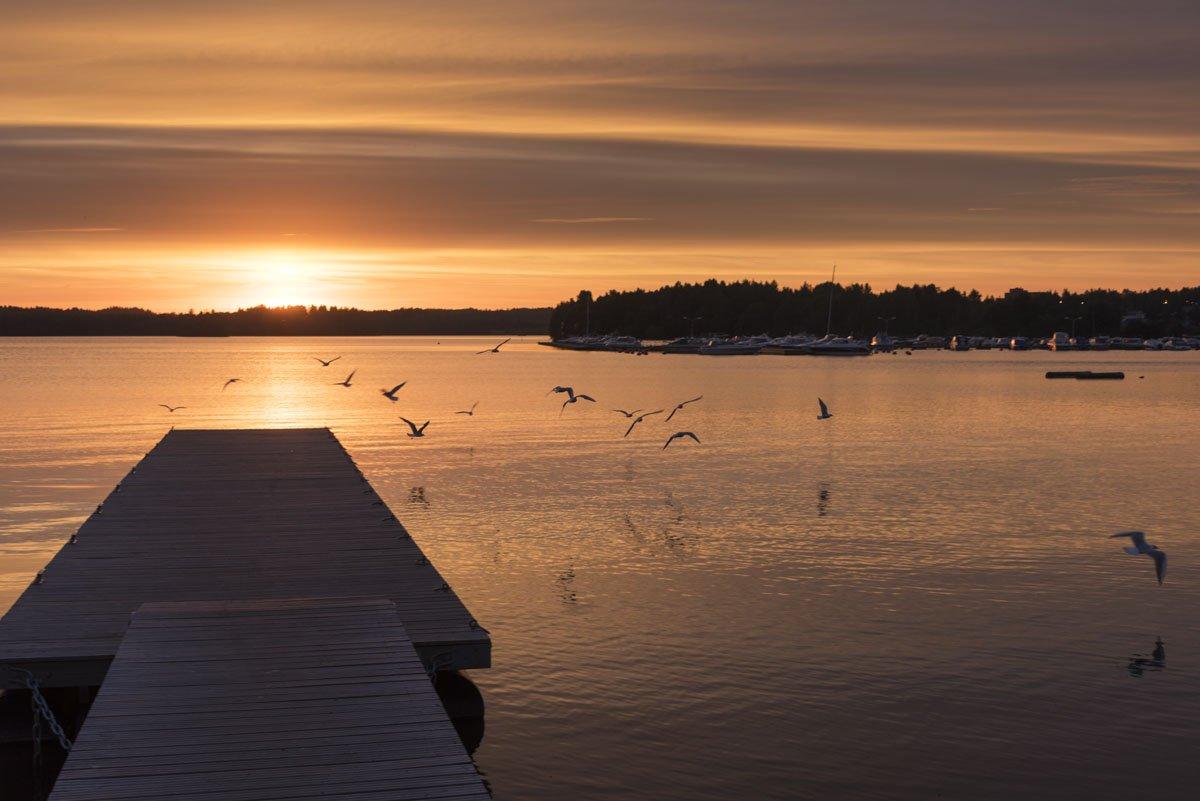 lohja finland lake sunset birds