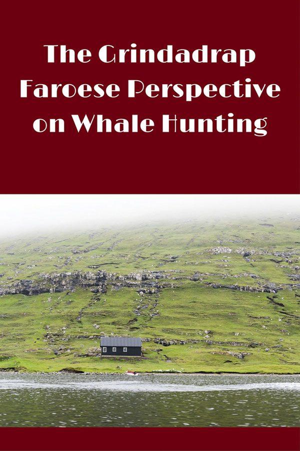 Faroe pin 2
