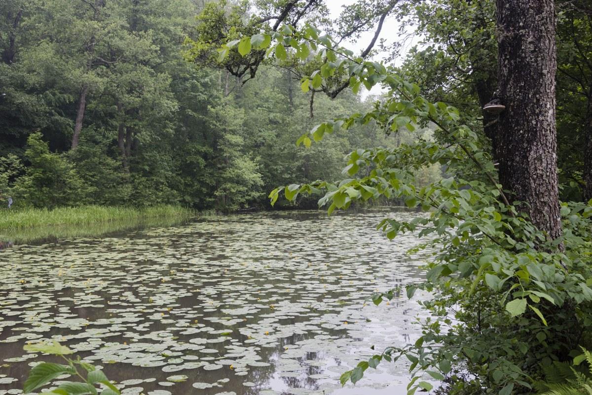 fiskars-river