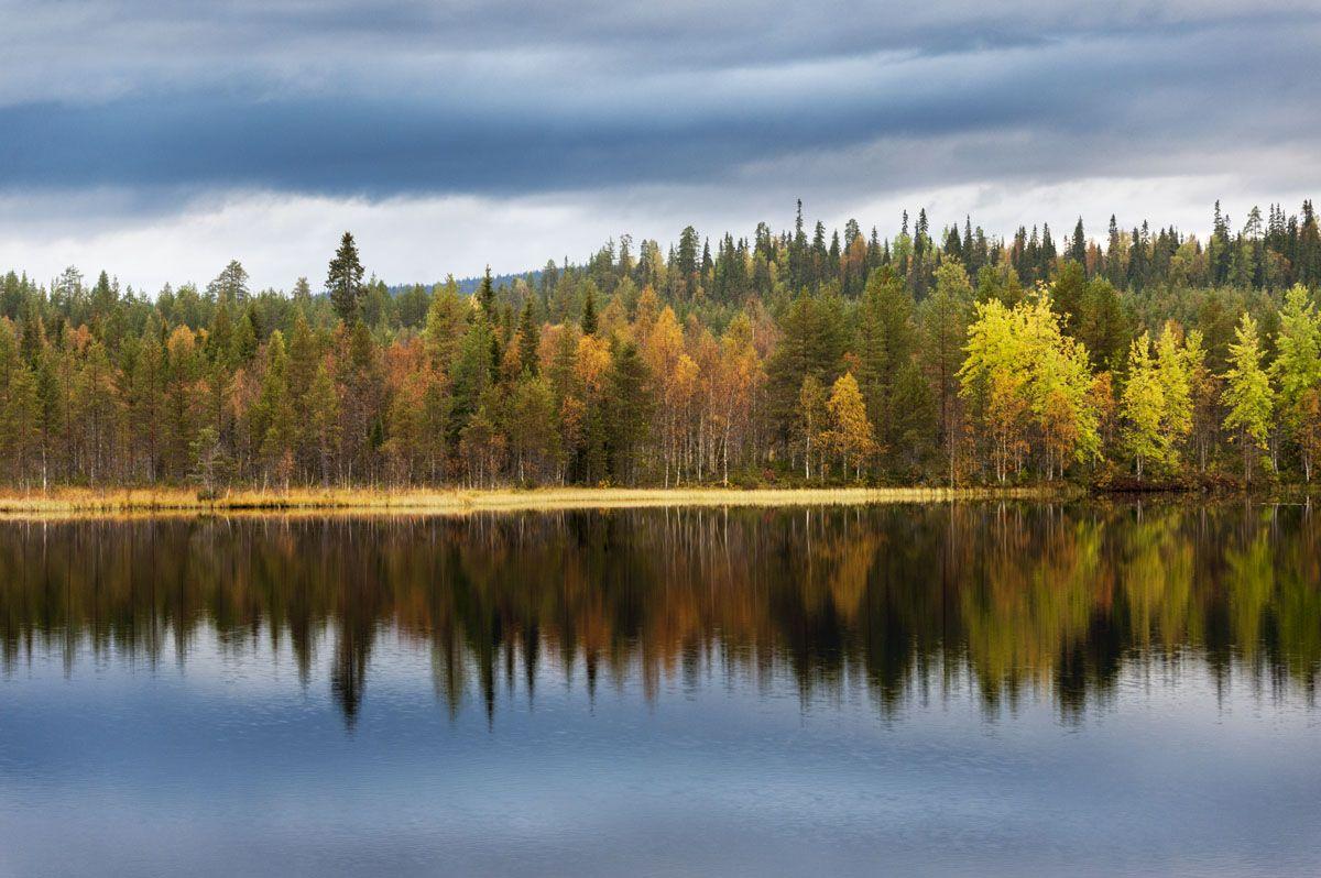 isokenkaisten-klubi-autumn-colours
